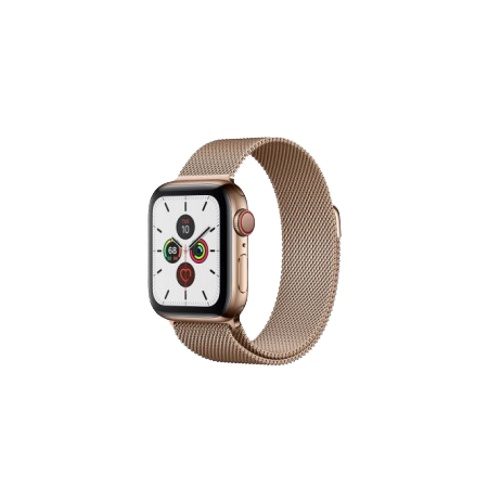 Apple Watch S5 40 mm Gold Stainless Steel Case with Milanese Loop GPS + LTE MWWV2